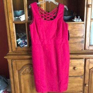 Rafaella Dress. Size 10. Pink.
